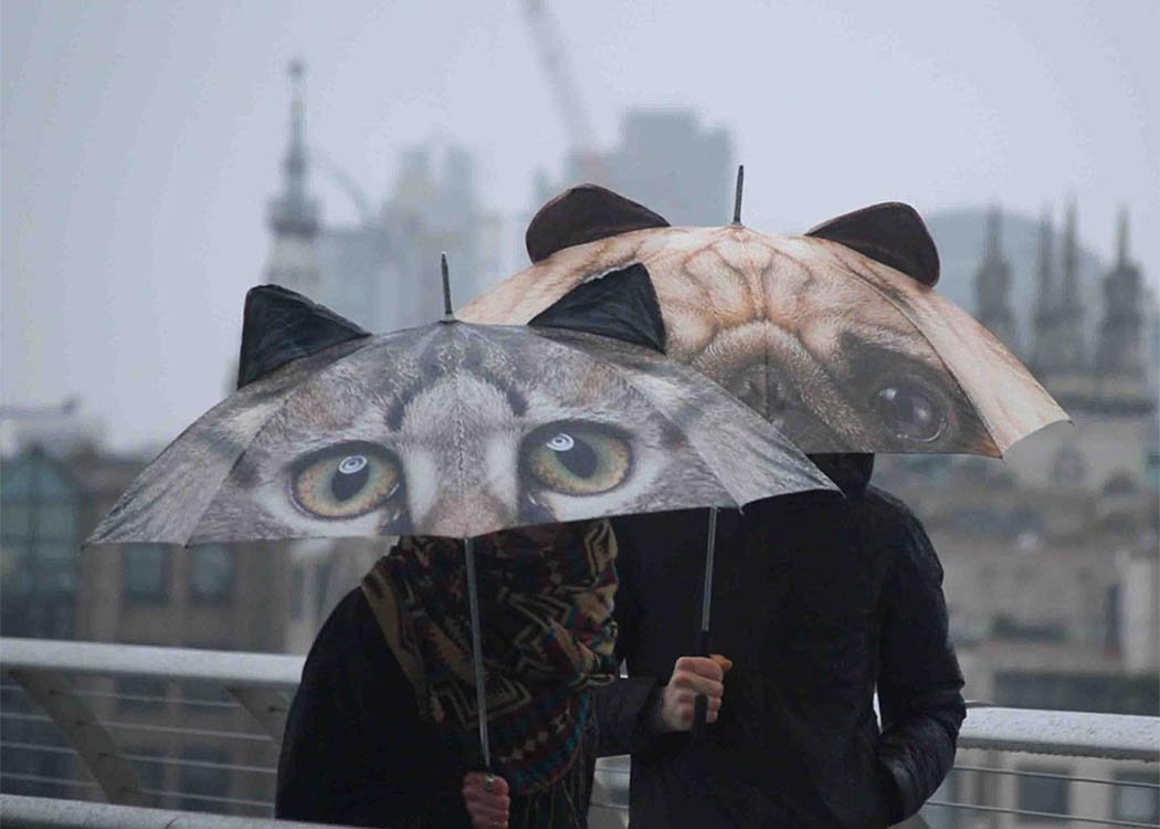 Animal Umbrella by Pikkii, Cat and Pug keeping 2 people dry in the rain.
