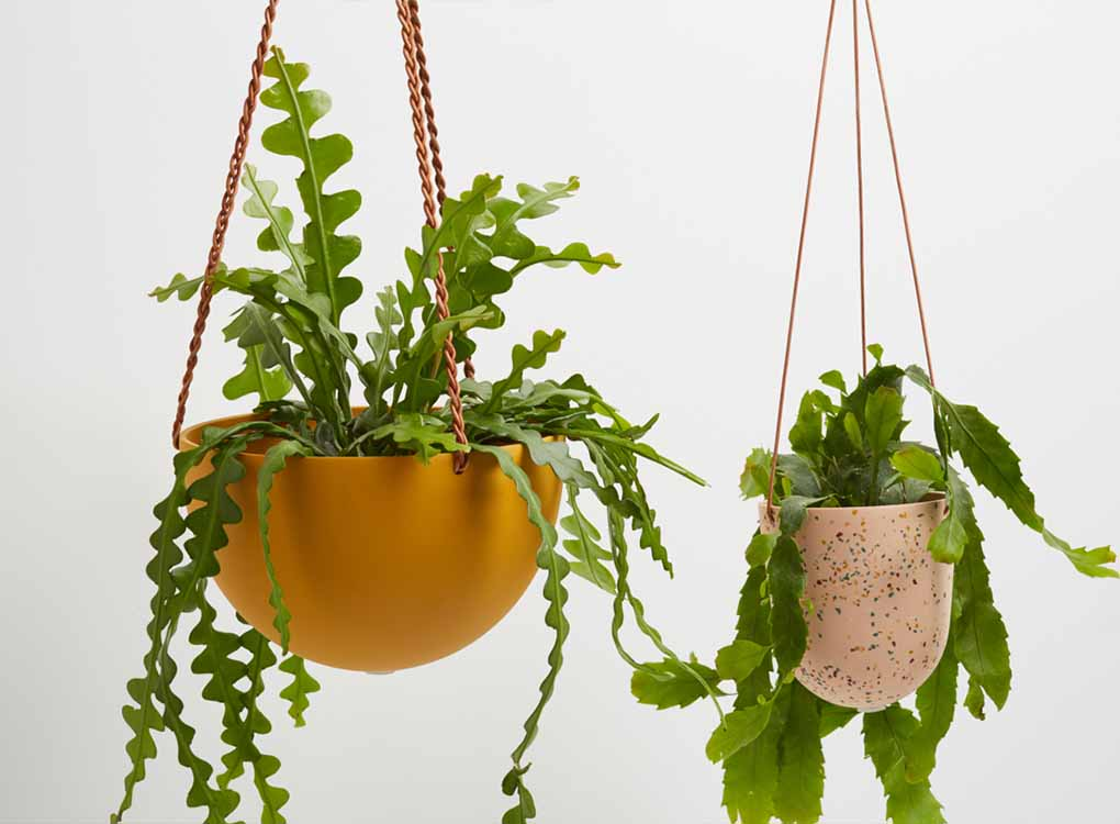 SALT TERRAZZO HANGING PLANTER BY CAPRA DESIGNS. SKILLFULLY HAND MADE FROM A RESIN AND FINISHED WITH TAN LEATHER. Each planter has a hole in the bottom for drainage and a plug for convenience. Worldwide shipping. Free UK shipping over £30.