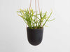 Hanging Planter, Block Colour in Midnight from Capra Designs. Hand made plant pot.