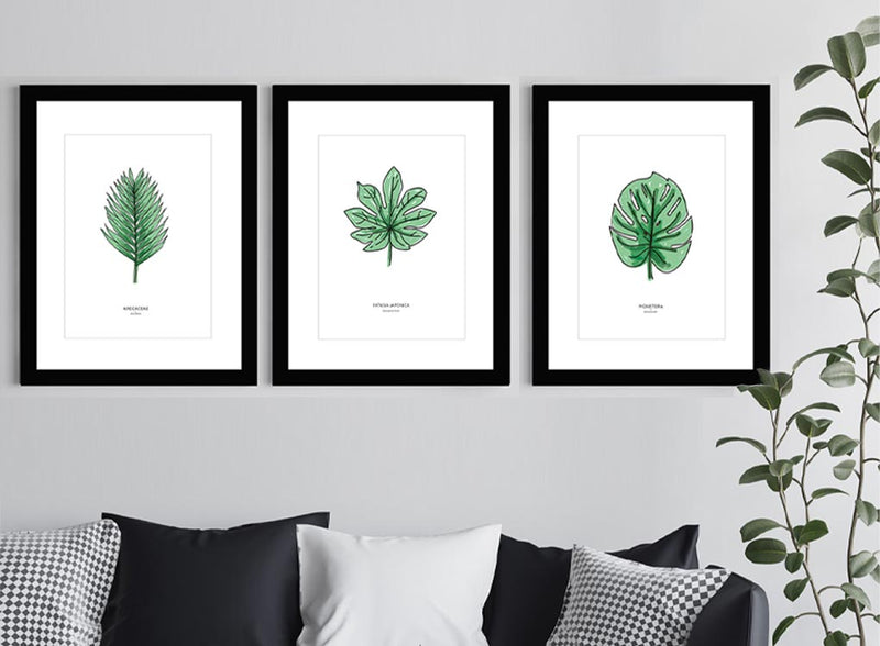 Arcaceae Print with Black frame