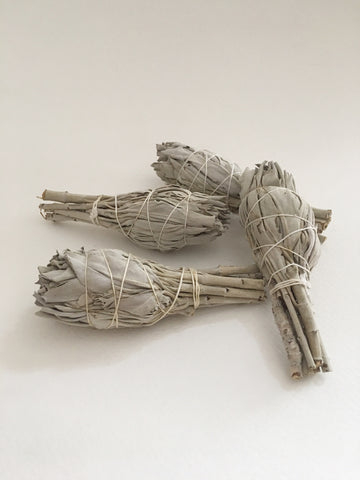 Wild White Sage Smudge Stick