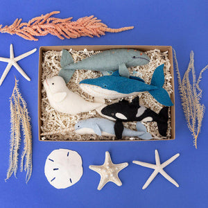 Whale Lover's Gift Box Set
