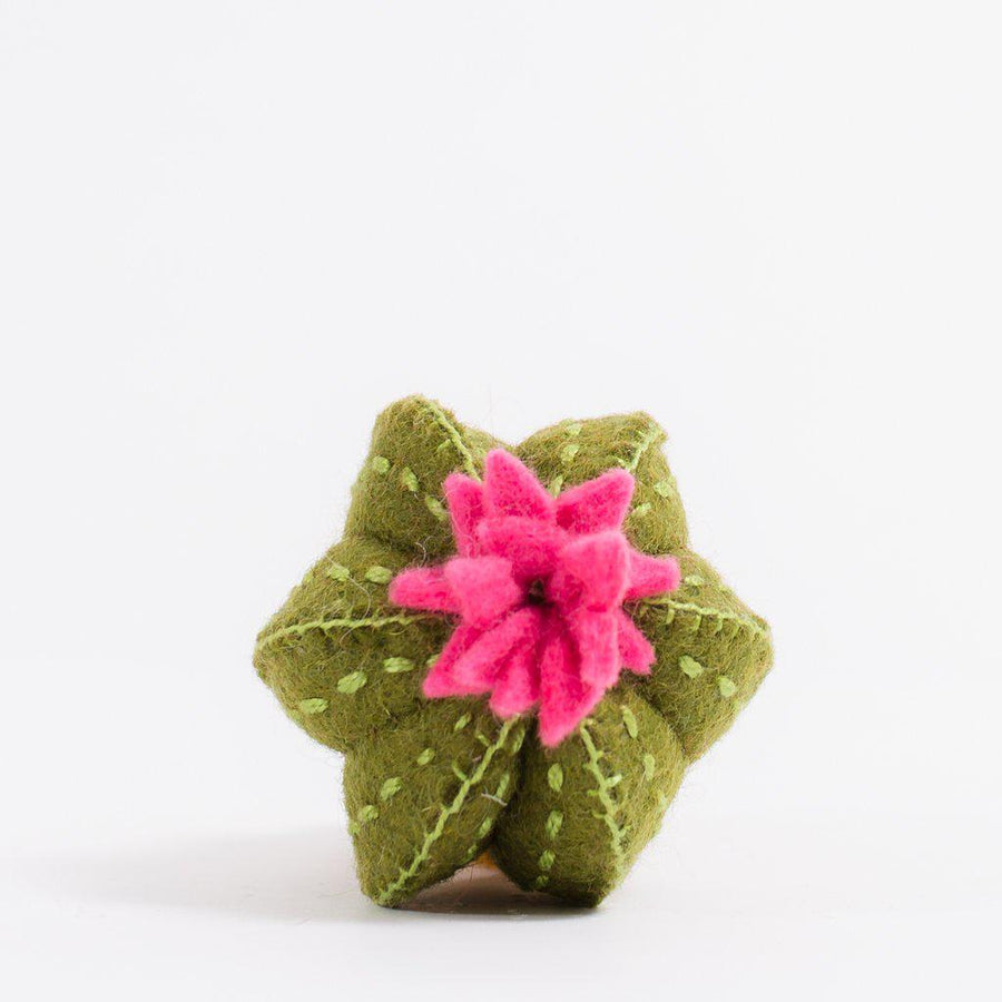 A Craftspring handmade felt take me home cactus ornament with a pink blossom on top