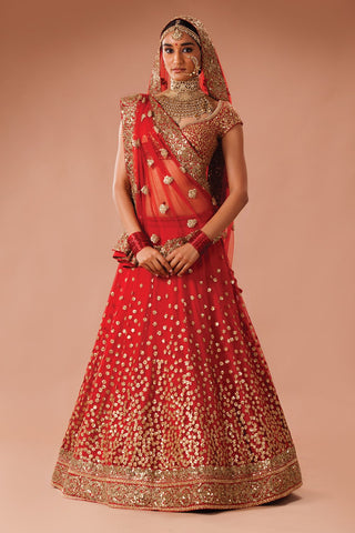 Net Lehenga with scattered sequin embroidery
