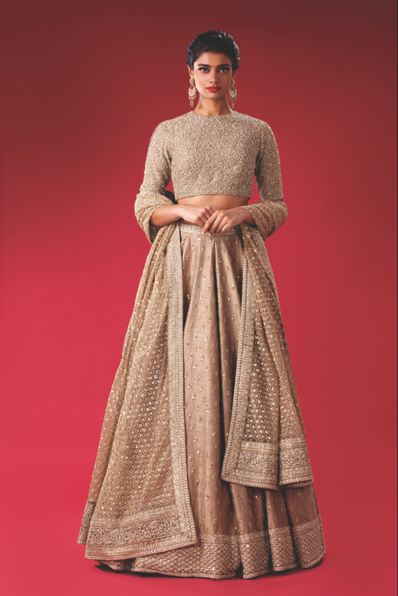 Raw Silk Lehenga with delicate embroidery