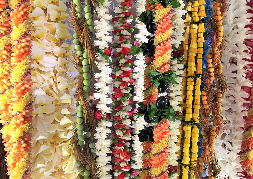 The Lei, An Infinite Circle of Aloha