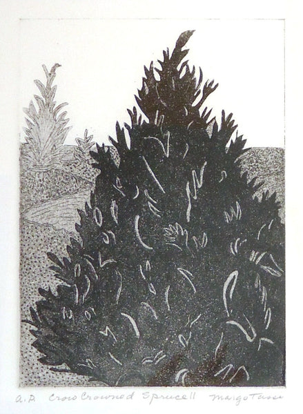 Margo Tassi: Crow Crowned Spruce II