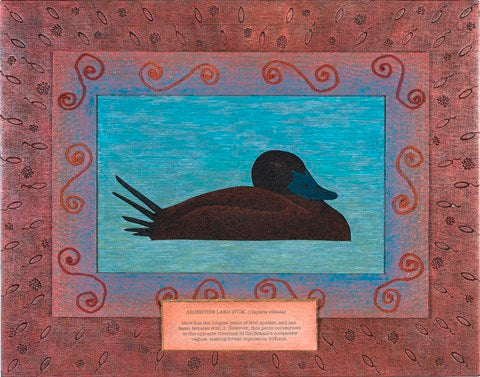 E. Sherman Hayman: RE:PRODUCTION #5 - Argentine Lake Duck