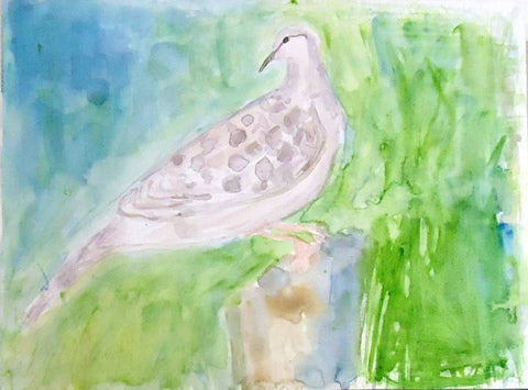 Watercolor painting of dove with blue and green background by Amanda Moseley