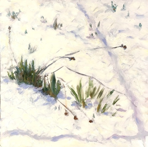 Jeff Thomsen: March Snow Shadows