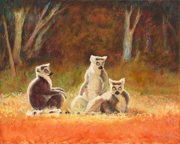 Jeff Thomsen: Three Lemurs in a Landscape