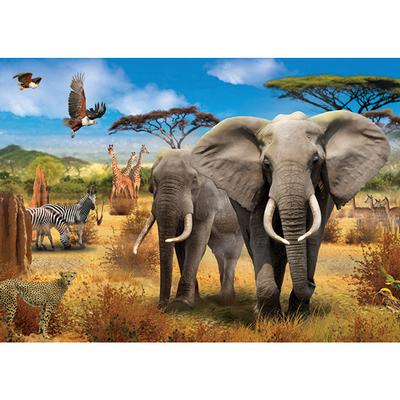 African Savannah, 500 pc