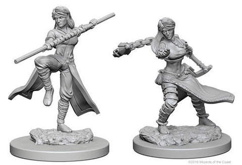 D&D Miniature Human Monk female