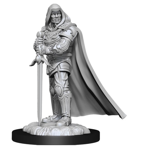 D&D Nolzur's Marvelous Unpainted Miniatures: Wave 13: Human Paladin Male