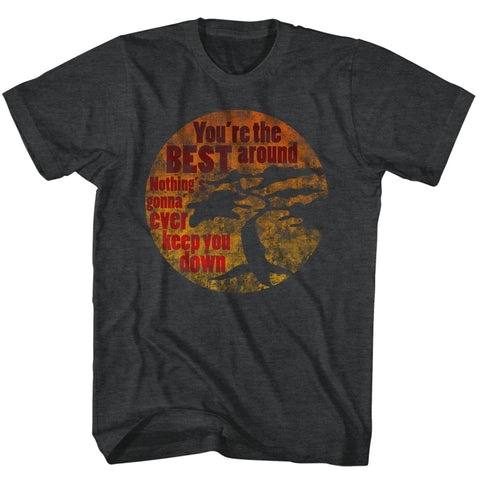 Karate Kid Adult S/S T-Shirt - You'Re The Best - Heather Black Heather