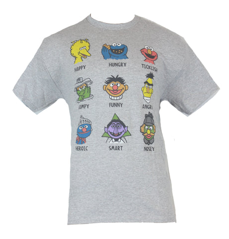 Sesame Street Mens T-Shirt -  Heads of Famous Characters Defined - Inmyparentsbasement.com