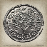 Shire Shilling - THE SHIRE™ - .999 pure silver