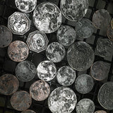 Full Moon Silver Coin