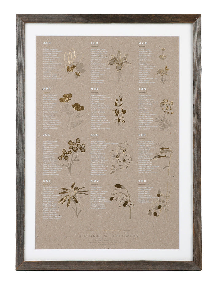 YAC | Framed Seasonal Wildflower Chipboard