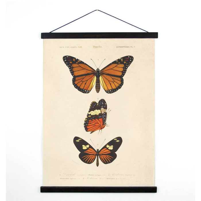 Curious Prints | Vintage Butterfly Canvas Wall Hanging