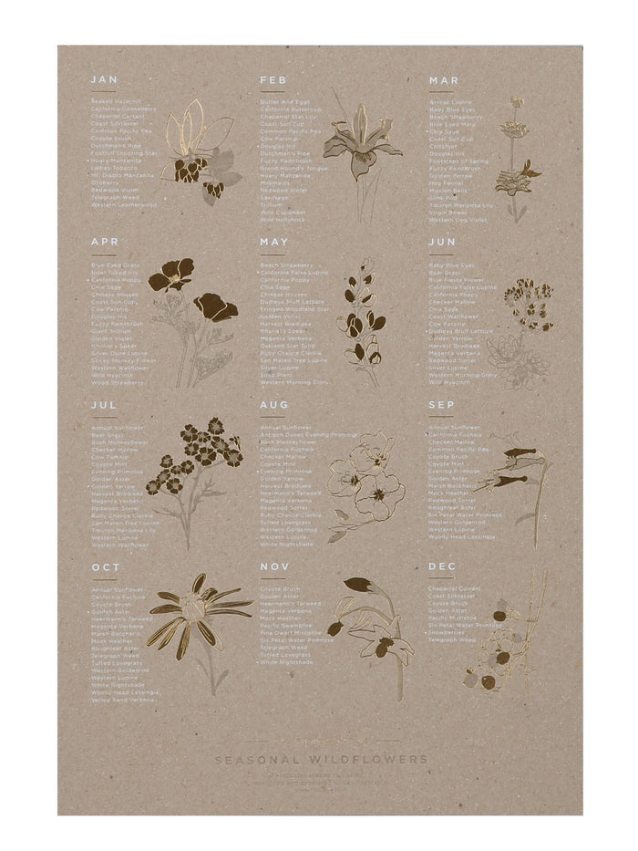 YAC | Seasonal California Wildflower Chipboard