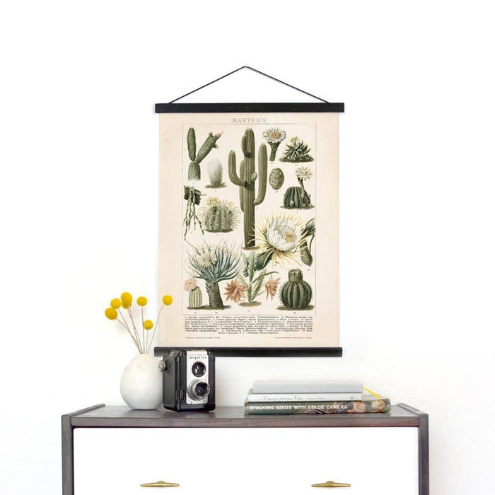 Curious Prints | Vintage Botanical Cactus Kakteen Canvas Wall Hanging