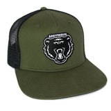 Bolt Bear Cap - Olive