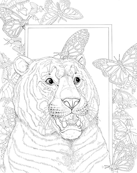 Adonna Khare Coloring Book