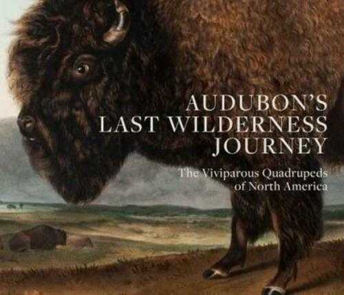 Audubon's Last Wilderness Journey