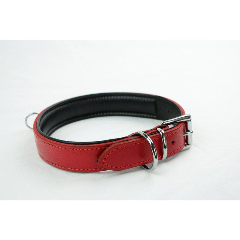 Collar - Padded Red Leather with D Ring-FET-The Love Zone