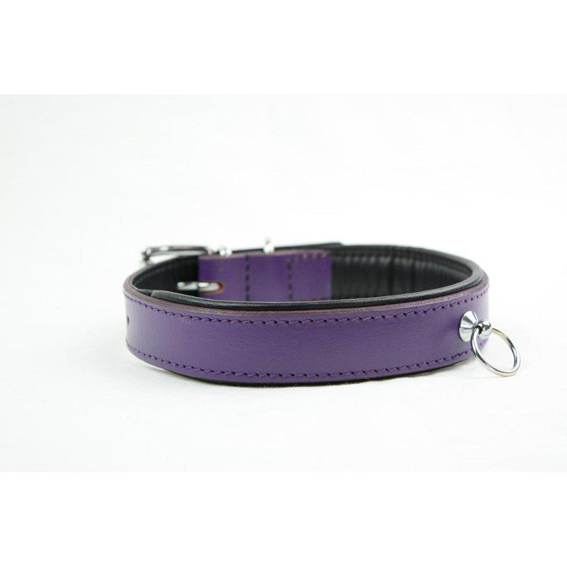 Collar - Padded Purple Leather w D ring-FET-The Love Zone