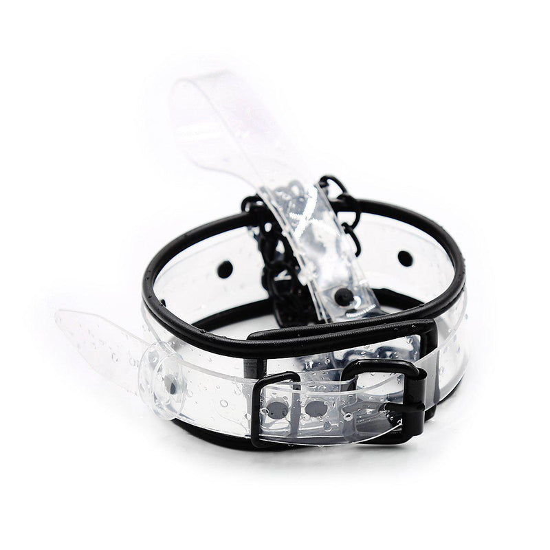 Collar - Transparent with D Ring-FET-The Love Zone