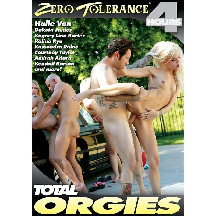Adult Movie - Total Orgies - 4 hours-DVDC-The Love Zone