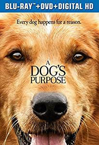 A Dog's Purpose Digital Copy Download Code iTunes HD