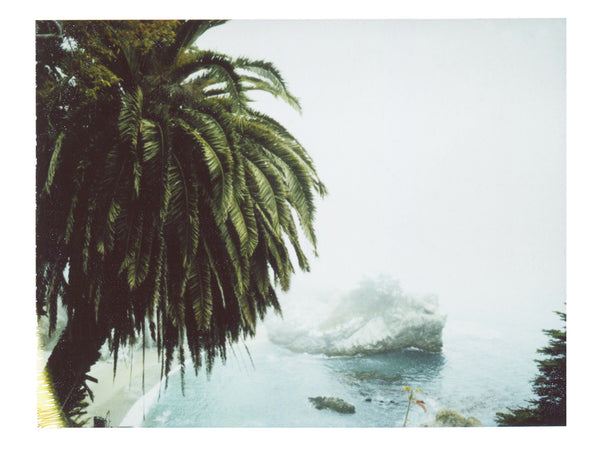 A Deep Breath Of Beach And Fog (California)