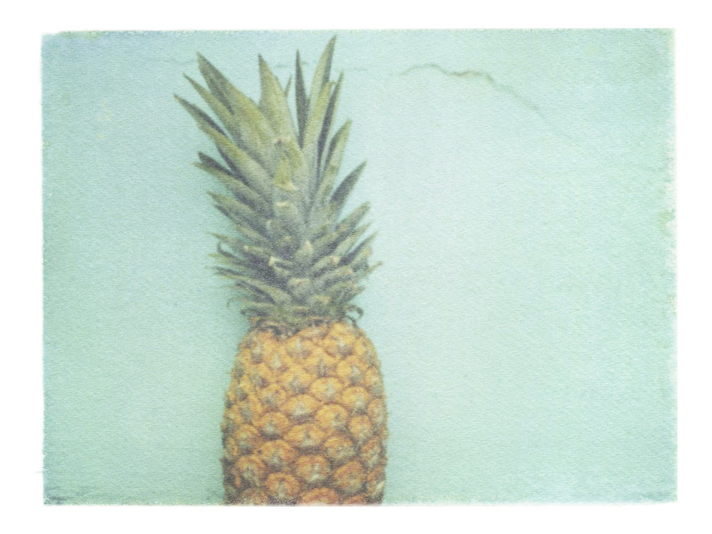 "Pale Blue Pineapple • 8x10"" Print - She Hit Pause"