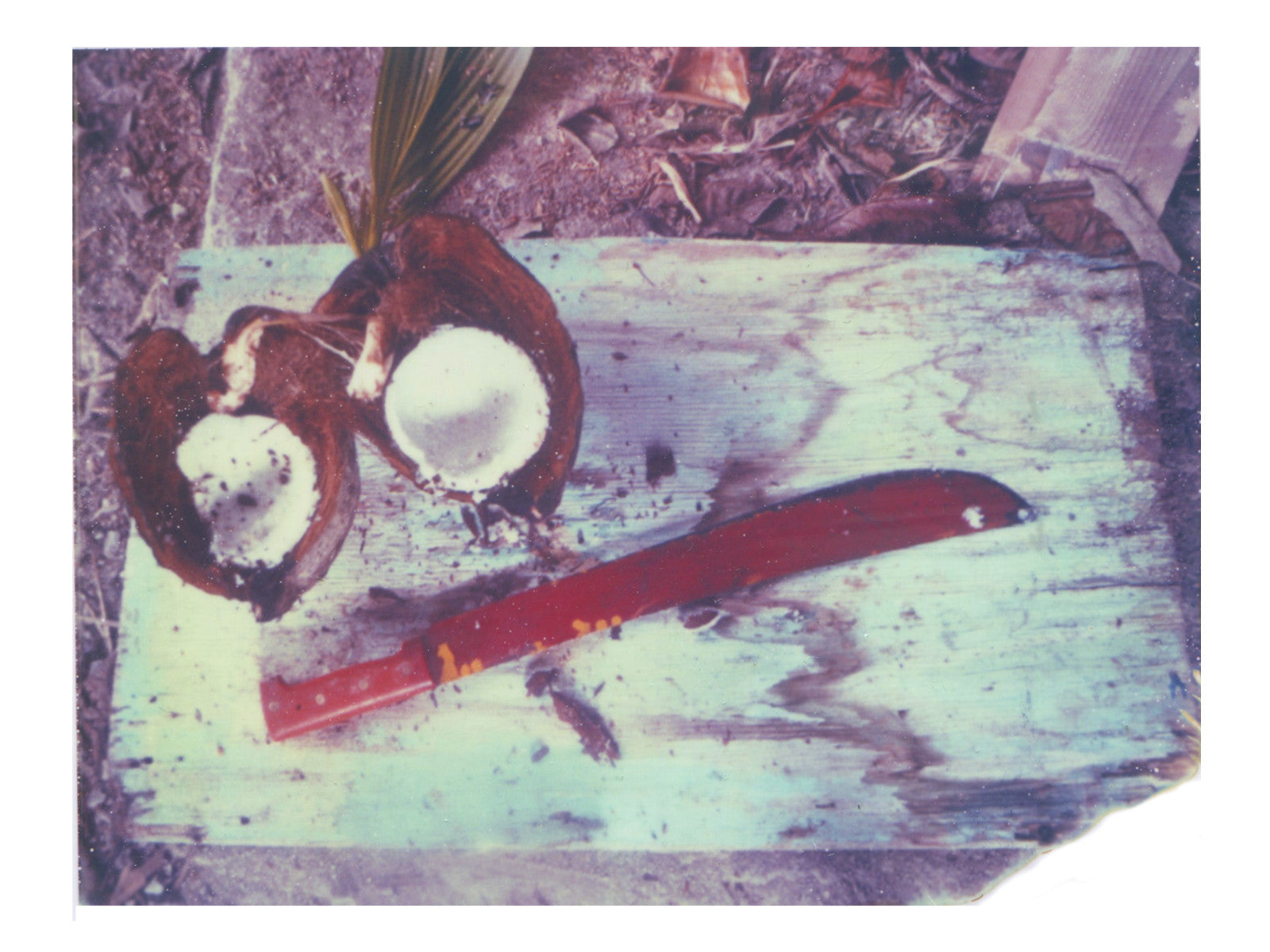 Red, Blue + Coconut - She Hit Pause