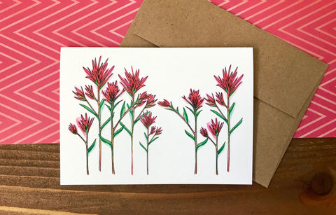 indian paintbrush flowers on a note card
