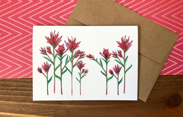 Assorted Blank All Occasion Cards - Boxed Set of 8 1