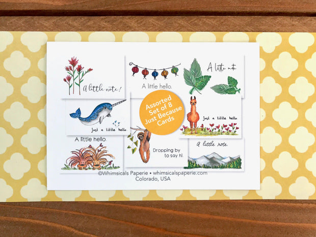 Assorted Just Because Cards - Boxed Set of 8 1