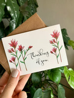 Indian Paintbrush Cards, Choose Your Message - Boxed Set of 8