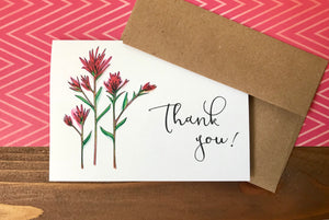 Indian Paintbrush Thank You Cards