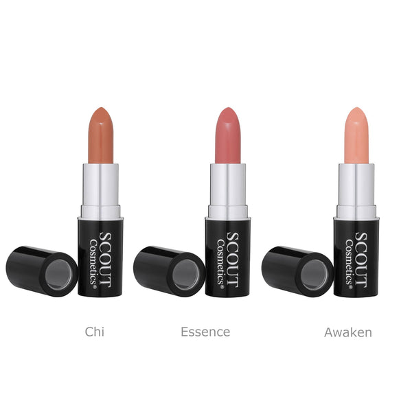 Delicately Nude Lipstick Trio