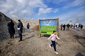 Netherlands Built 5 Artificial Islands to Preserve Wildlife