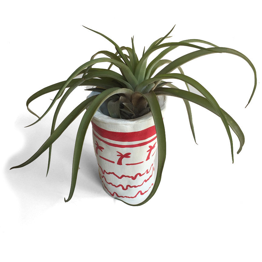In & Out Cup - Planter