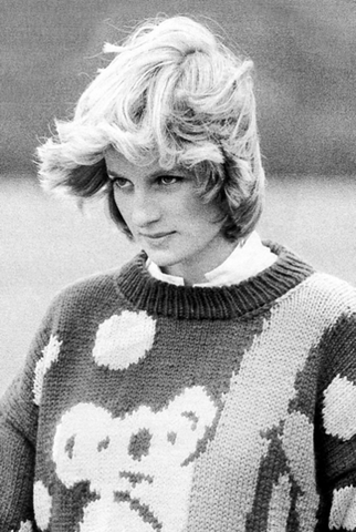 Koala collectables: Princess Di in Jenny Kee's 'Blinky Bill' jumper.
