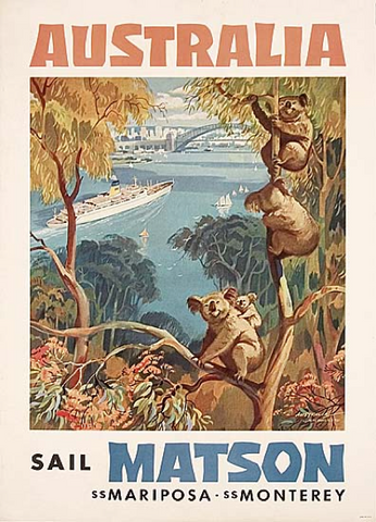 Koala collectables: Matson lines poster