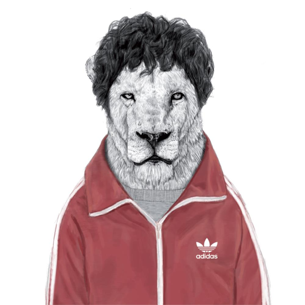 Greeting Card Sporty Lion