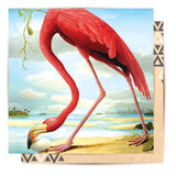 Greeting Card Greater Flamingo