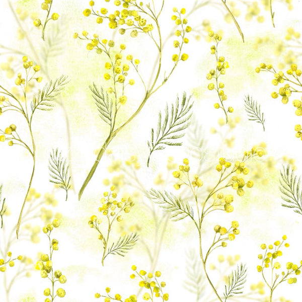 Wattle -  PRE ORDER OPENS FROM TUE 9th - 16th OCTOBER CLOSE